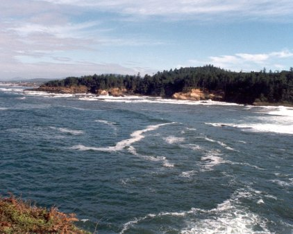 Oregon Coast-13