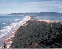 Oregon Coast-5