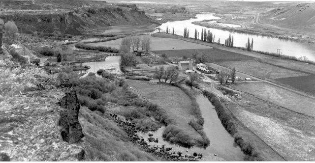 Ritter's Island-1950's