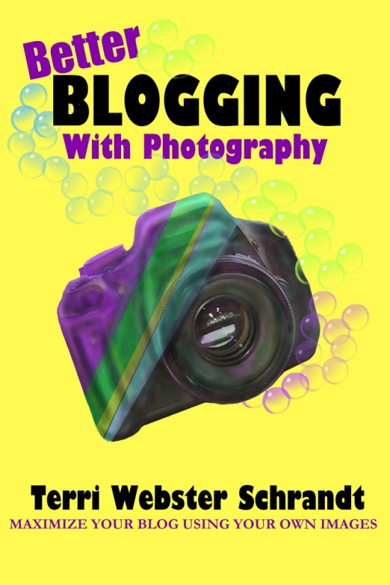 Better Blogging with Photography cover